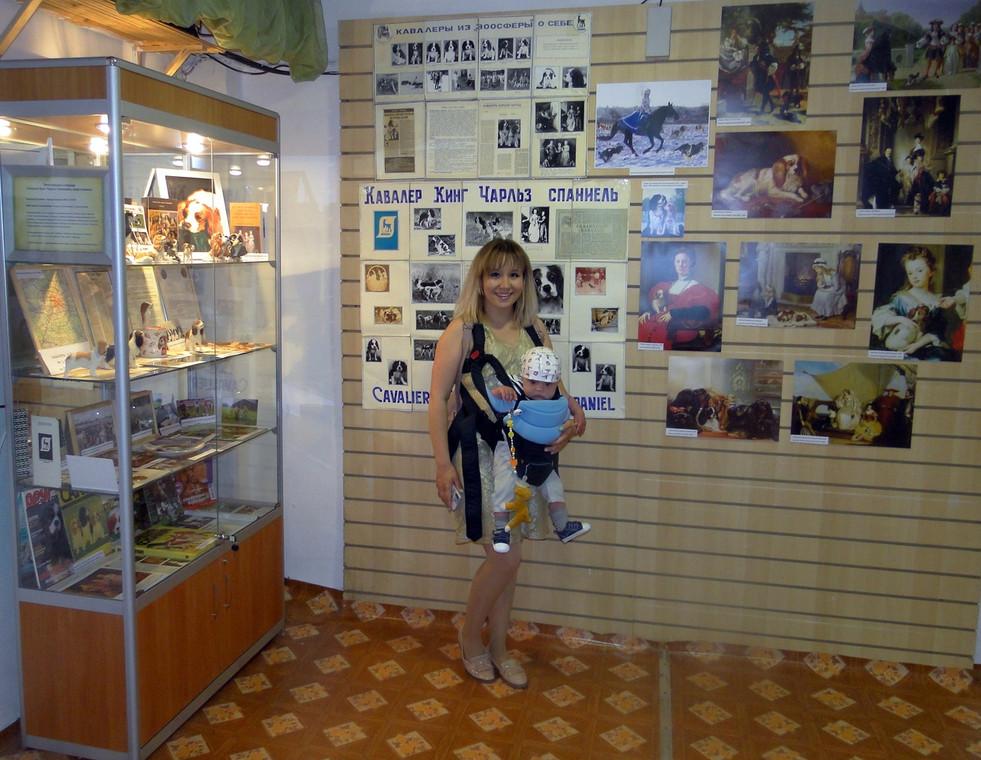 Кавалер Кинг Чарльз Спаниели в Музее