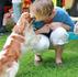 Воспитание и уход за щенком. Ответственный хозяин - кто он? Часть 2