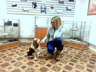 Экскурсия в Музей Собаки
