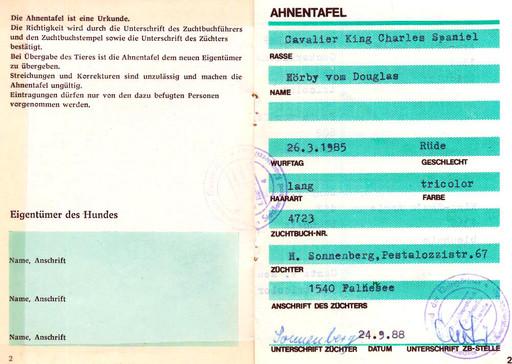 1985 год. Архив А.И.Полякова