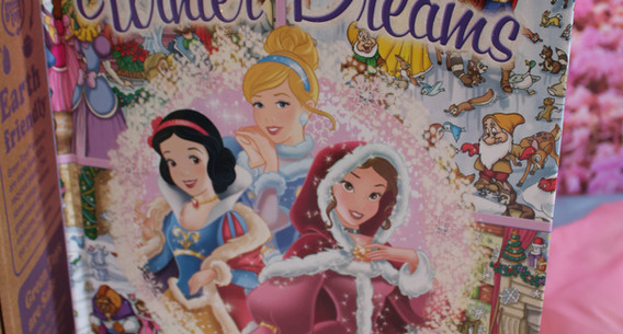 Princess Look & Find Book
