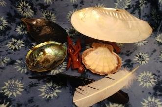 Shells & Feathers.jpg
