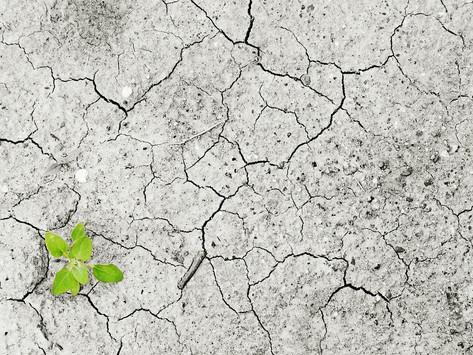 Stellungnahme des Klima- und Umweltbeirates zum Wiegesystem für Restmüll in Hamminkeln