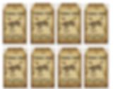 Dino Tag Sheet - Final.jpg