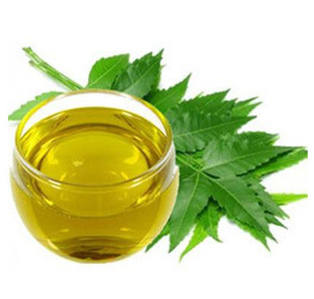 What is NEEM?