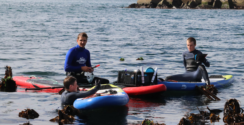 SUP and Snorkel - getting ready to dive -Hermanus
