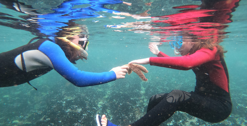 See...touch...experience...share - Hermanus