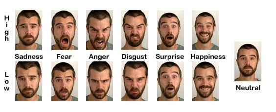 Methods To Uncover Basic Emotions: The Use Of Facial Expression, Words And Actions