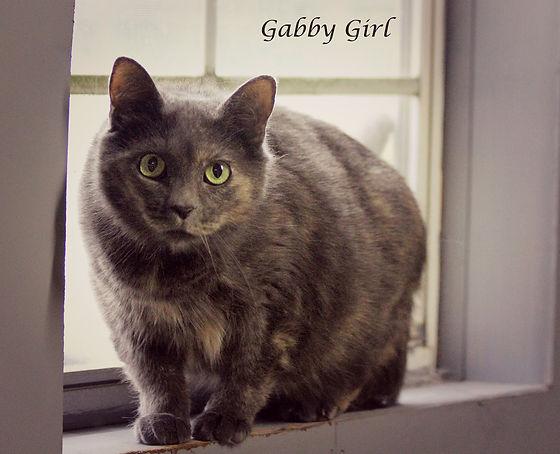Gabby Girl.jpg
