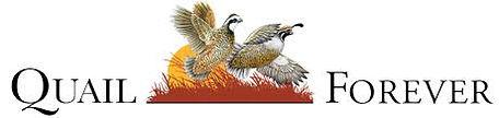quail forever  logo.jpg