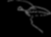 Crow Public Relations logo