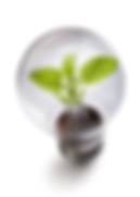 LED Lighting - Making brighter use of your electrics