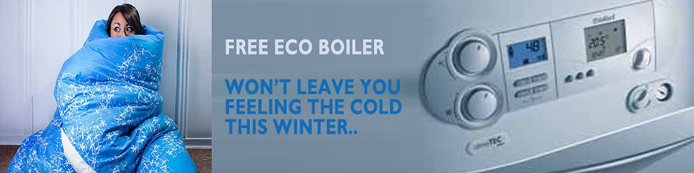 ECO Boilers