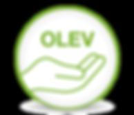 OLEV Grant funding