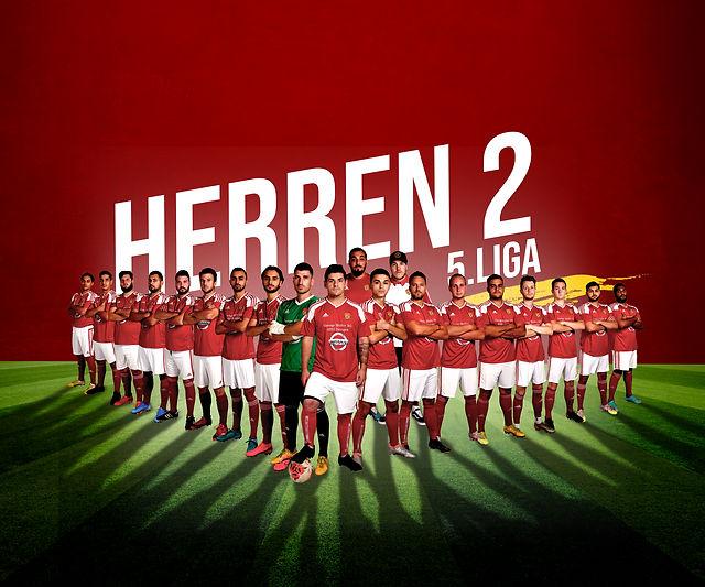 Herren_5_Liga_Mannschaft_quer.jpg