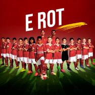 E_Rot.jpg