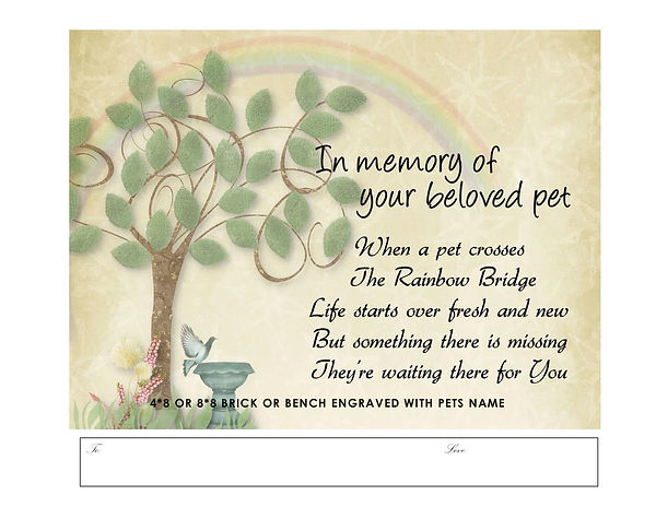 Memory of Pet Brick1.jpg