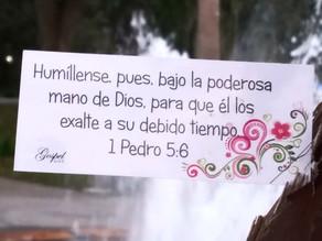 Día 8 Humíllense,pues,bajo la poderosa mano de Dios,para que él los exalte a su debido tiempo.
