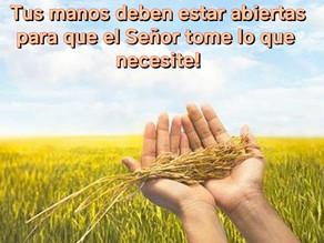 Tus manos deben estar abiertas para que el Señor tome lo que necesita