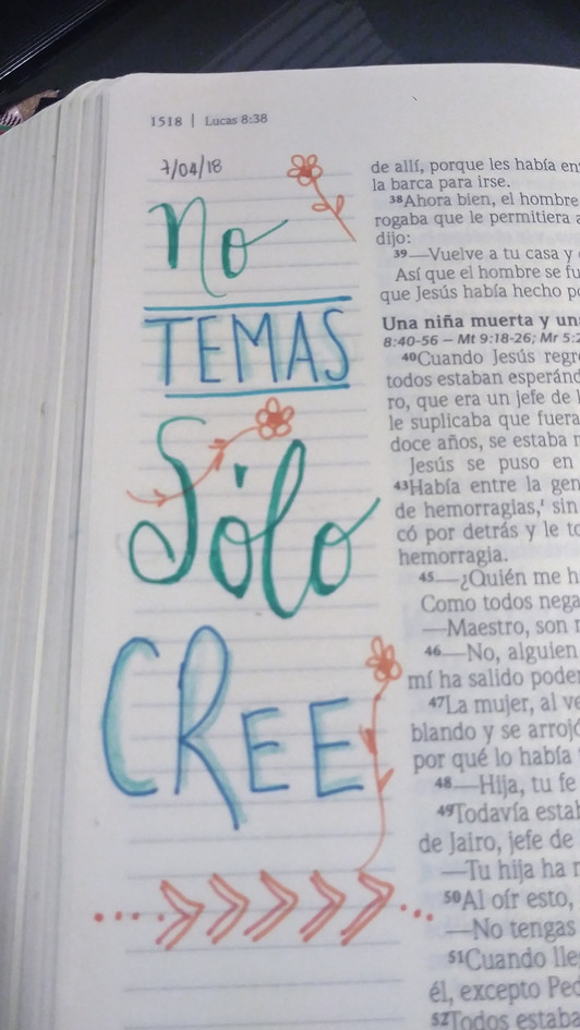 pinta tu biblia
