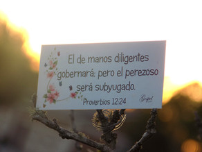 Día 54: El de manos diligentes gobernará; pero el perezoso será subyugado. Proverbios 12:24