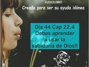 Día 44: Debes aprender a usar la sabiduria de Dios!