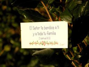 Día 15: El Señor te bendice a ti y a toda tu familia. 2 Samuel 6:11