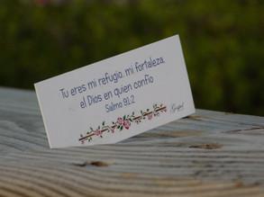 Día 46: Tu eres mi refugio, mi fortaleza, el Dios en quien confío. Salmo 91:2