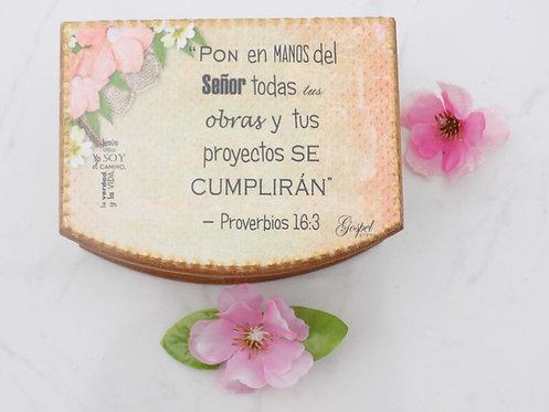 501 Caja de versos de la Biblia Bilingues - Regalos cristianos