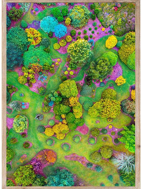 Lofty Gardens