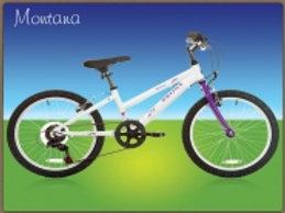 Bronx Montana Girls Bike