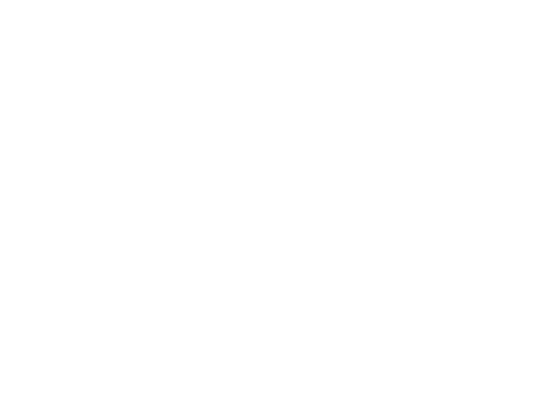 Olympic Web NEW Logo.png