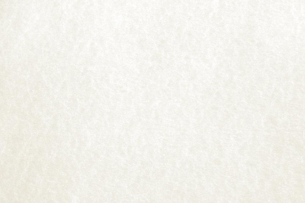 white-parchment-paper-texture.jpg