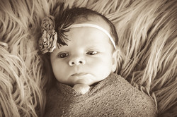 Murphy Newborn (60)