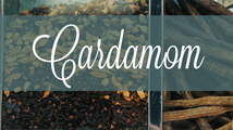 Common Scents: Cardamom