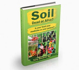 Soil Dead or Alive?: Is Your Food Your Medicine or Your Poison?