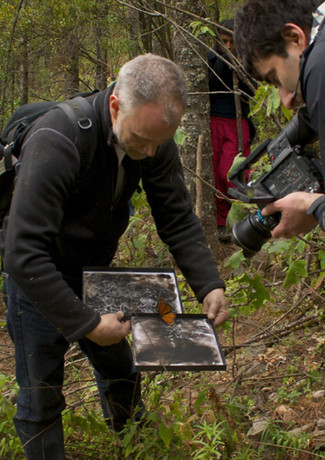 Jean-Nicolas Ohron filming Spazuk as he captures traces of a Monarch on soot.