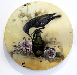 Starling on Grenade