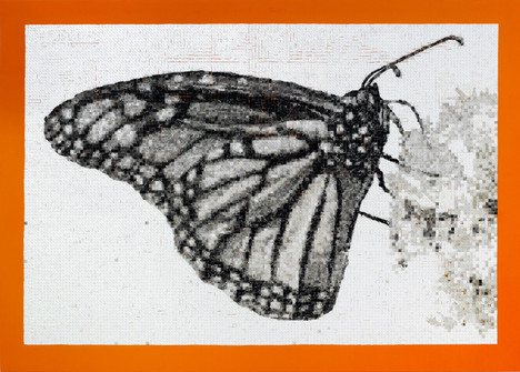 The Monarch Project