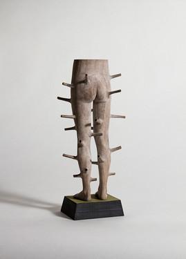 Regrowth (legs)