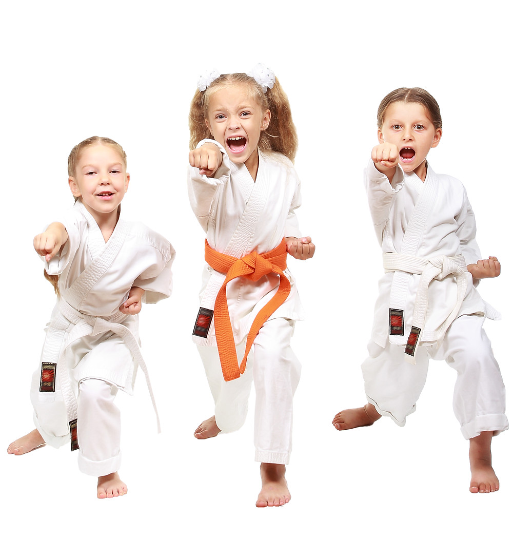 kids karate cary, nc