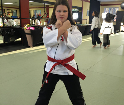 A 10 Year Old's Black Belt Candidate Autobiography
