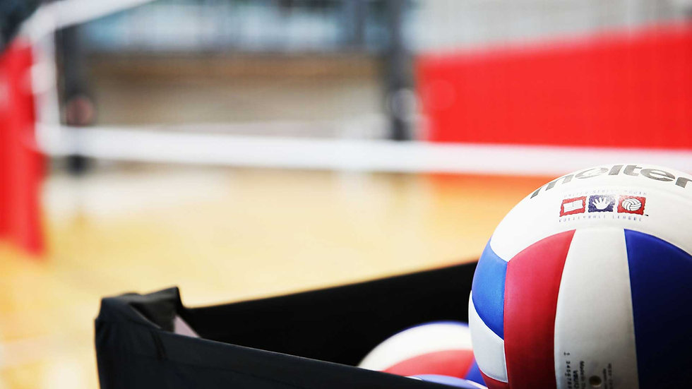 volleyball_macro2.jpg