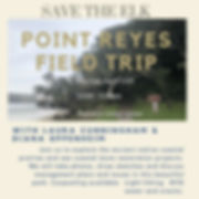 PtReyes-fieldtrip-4-19.jpeg