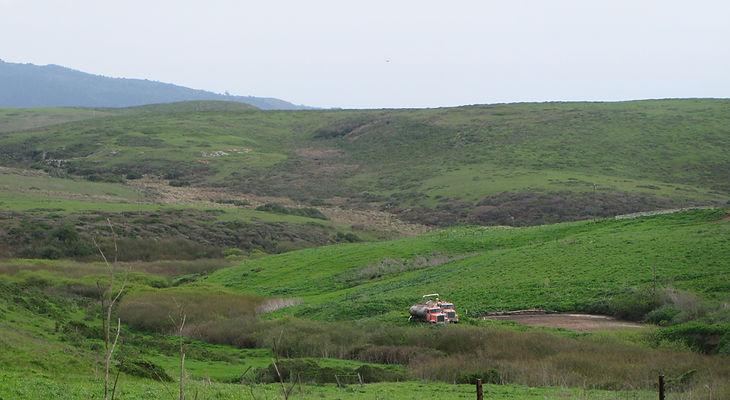 Kehoe-Crk-manure.jpg