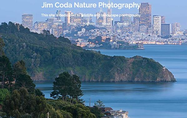 Jim-Coda-Nature-Photography.png