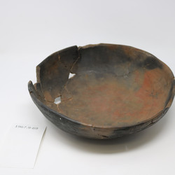 Tapereba Bowl