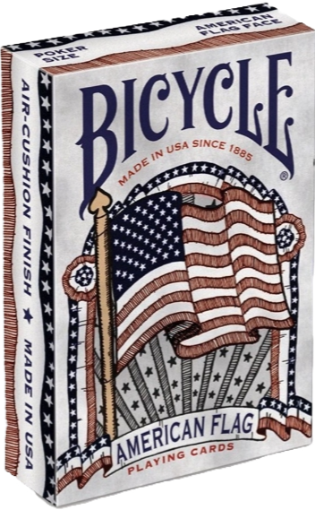 aw3110 clear back bicycle  flag