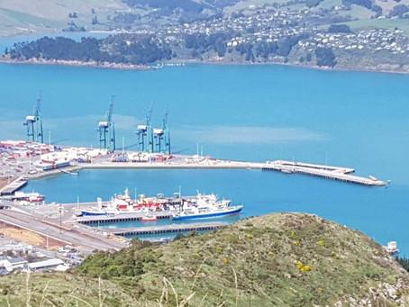 因為遊輪停航,紐西蘭損失多少?