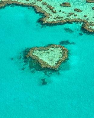heart-1492445_1920.jpg